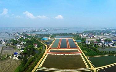 千龙湖国际垂钓主题公园盛大开园 翘嘴节火热开赛