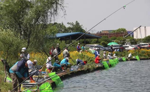 千龙湖分享竞技钓鱼选钓钩的三个原则与技巧