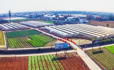 生态农业观光基地