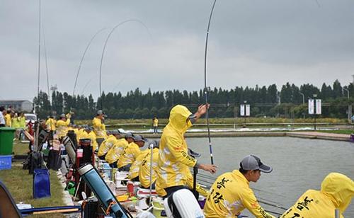 千龙湖分享竞技钓鱼比赛中必备的3个技巧
